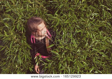Hiding In Branches