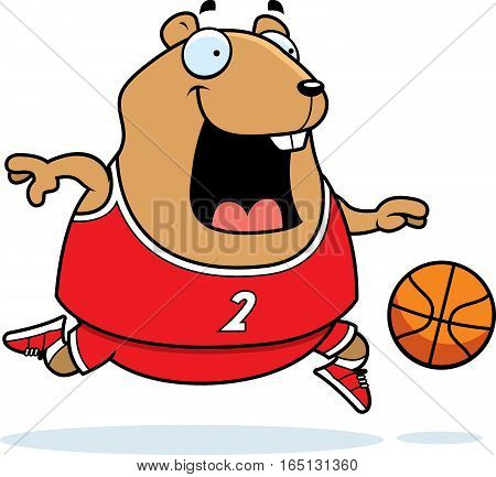 Cartoon Hamster Basketball