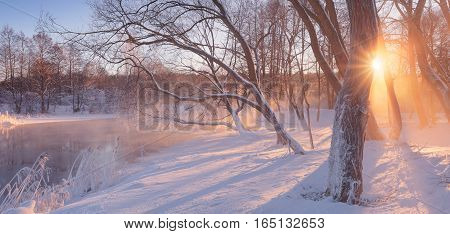 Winter sunrise in forest. Frosy morning in park. Winter background with sun beams. Sun shine through trees at whie snow.