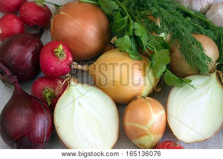 Still life with lot of onions, radishes, dill and parsley closeup