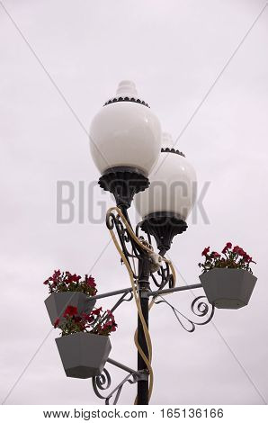 Lantern with blooming flowers. Autumn with dark sky
