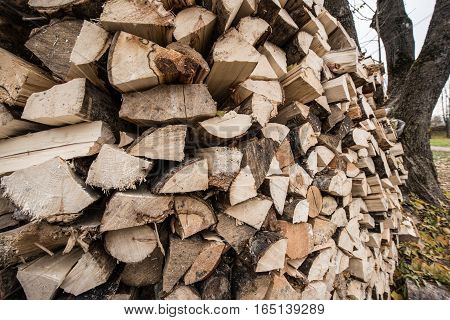 A Large Number Of Firewood