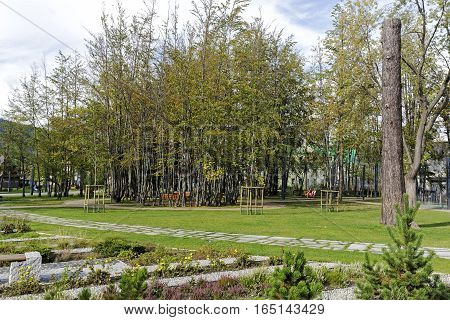ZAKOPANE POLAND - SEPTEMBER 23 2016: Trees and alleys in the city park named Marshal Jozef Pilsudski the revitalization of the park was completed in 2013