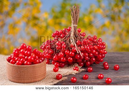 ripe red viburnum berries in a wooden bowl on table with blurred garden background.