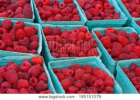 Cartons of fresh raspberries at a farmers market.