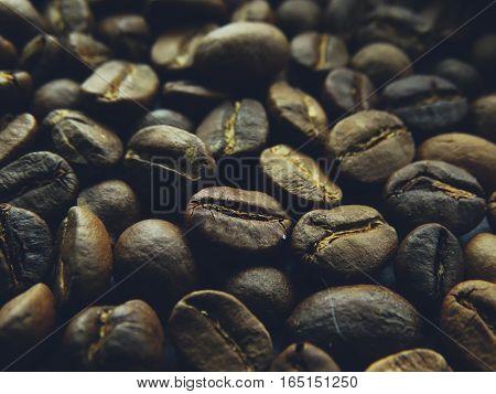 Fresh coffee grains harvest variety arabica wallpaper background closeup