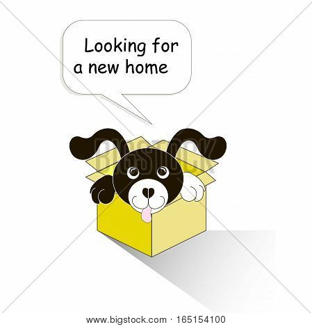Typography banner Looking for a new home, black and white cartoons dog in the yellow box on white, stock vector illustration