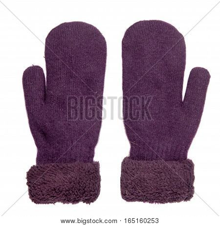 Mittens Isolated On White Background. Knitted Mittens. Mittens Top View.purple Mittens .