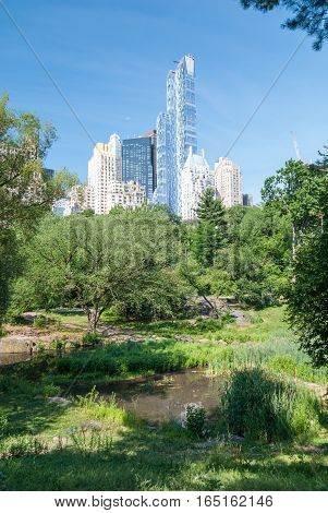 Manhattan towers emerging over Central Park, NYC