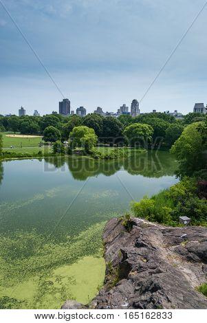 Manhattan towers emerging behind Central Park landscape