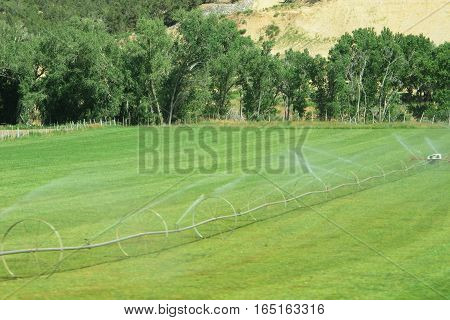 traditional irrigation system in farmers field in Utah