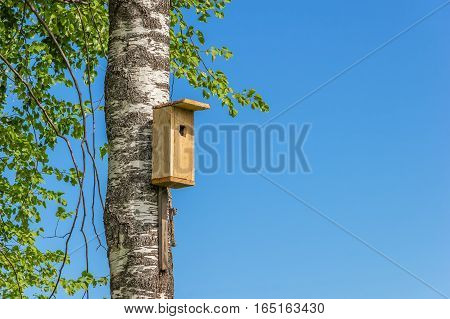 Birdhouse on a birch on a background of blue sky. House for birds of rough planks.