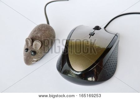rat toy and computer mouse on white background
