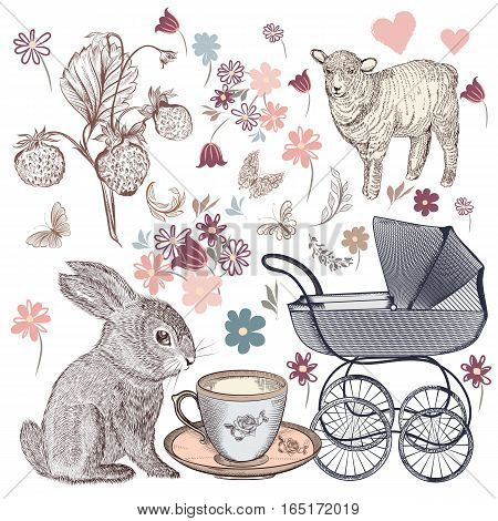 Collection of vector flowers strawberry rabbit baby pram and butterflies