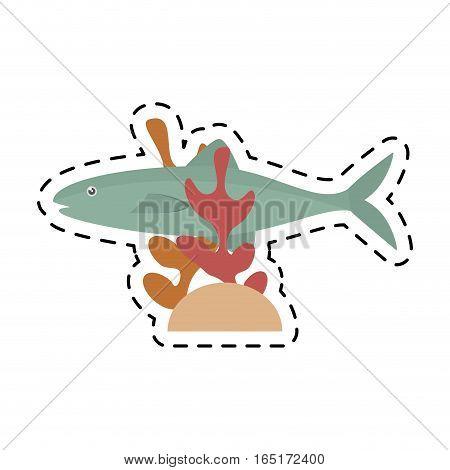 salmon fish sea food fresh coral vector illustration eps 10