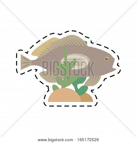 grouper fish side view sea life coral vector illustration eps 10