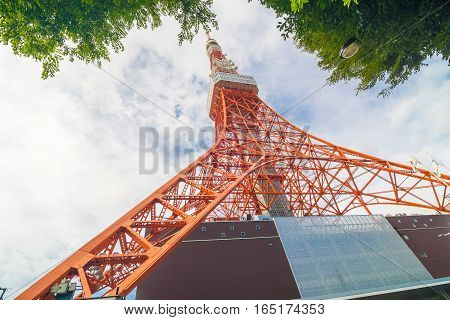 Tokyo Tower On Sunshine Day With Blue Sky Green Tree Leaf Foreground