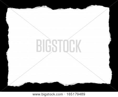 white torn paper isolated on a black background showing the fibers of the paper