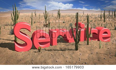 Letters of the word service in the hot sand of the desert on a sunny day 3D illustration absence of support concept