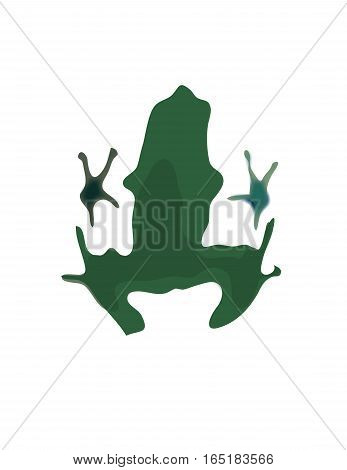 Frog silhouette isolated on white back ground.