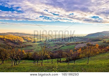 Colorful Early Morning Valley Landscape