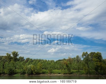 Picture of the cloudy sky over the river bank with green trees. Green forest on the river bank under the cloudy sky.