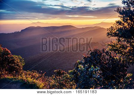 Sri Lanka: famous highland Horton Plains National Park