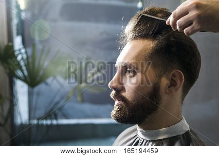 Close up of a concentrated brown haired businessman having his hair combed in a barber shop. Concept of grooming