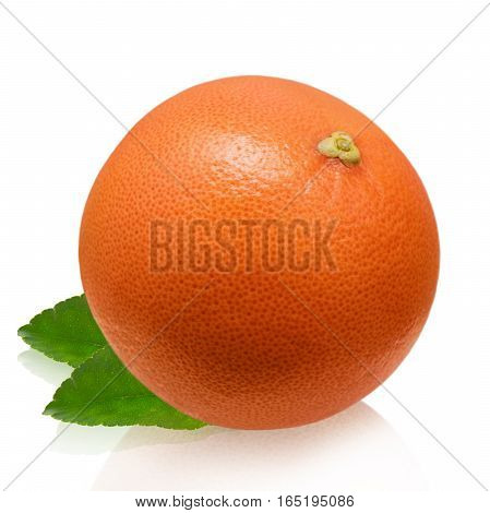 Pink grapefruit isolated on white background close-up