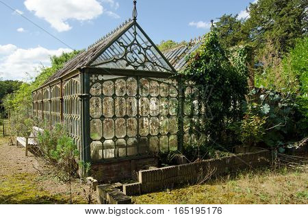 View of an old Victorian cast-iron greenhouse in an un-loved state. Glass panes have been broken the cast iron is cracking and the plants inside have grown leggy.