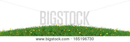 Seasonal background with green meadow and flowers on a white background 3d rendering
