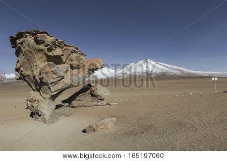 Arbol De Piedra (stone Tree) Is An Isolated Rock Formation In The Eduardo Avaroa Andean Fauna Nation
