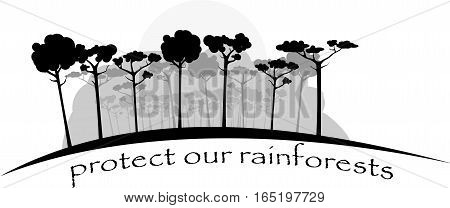 image shows rainforests in gray colors for you