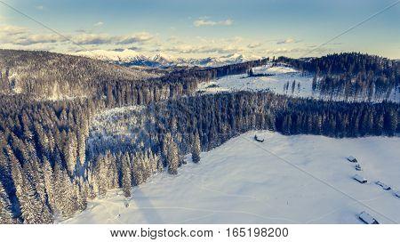 Aerial view of mountains above winter forest. Pokljuka, Slovenia.