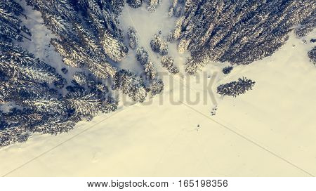 Aerial view of snow covered meadow with forest. Pokljuka, Slovenia.