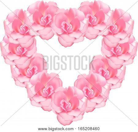 Heart from roses, pink flowers a vector, a vegetable ornament, the dismissed dogrose, a love symbol from flora