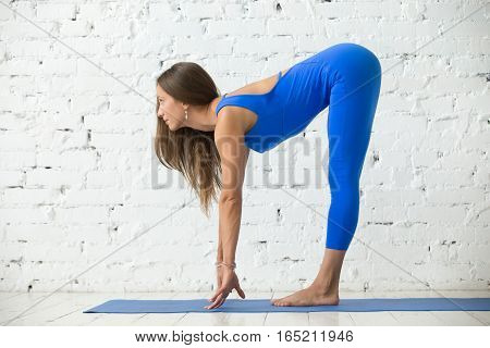 Young attractive woman practicing yoga, head to knees, Standing Half forward bend exercise, Ardha uttanasana pose, working out, wearing sportswear, blue suit, full length, white studio background