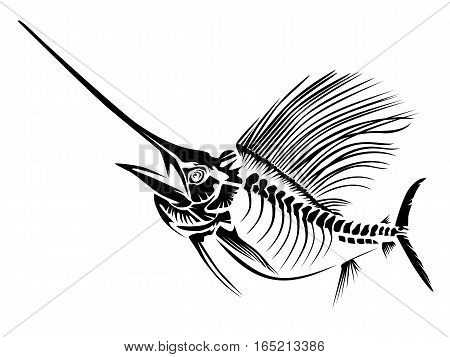 Sail Fish Skeleton Isoated On White