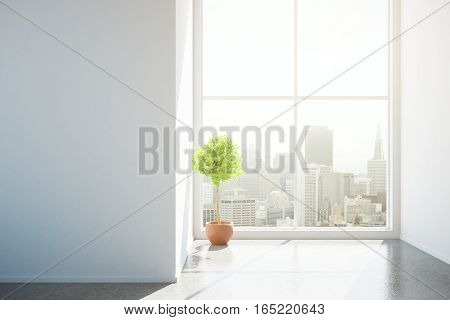 Front view of unfurnished concrete interior with blank wall decorative plant and city view. Mock up 3D Rendering