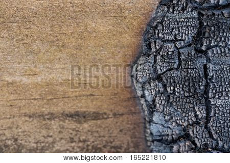Burned Wood On Right Copy Space On Left Image