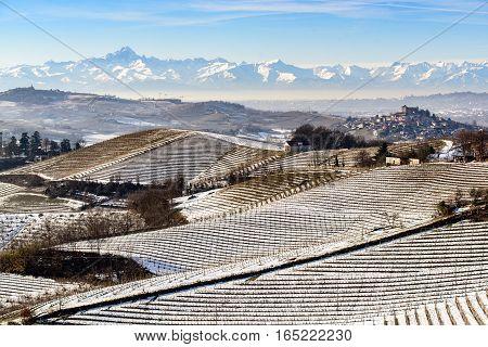 Vineyard hills under snow in Langhe region in Italy