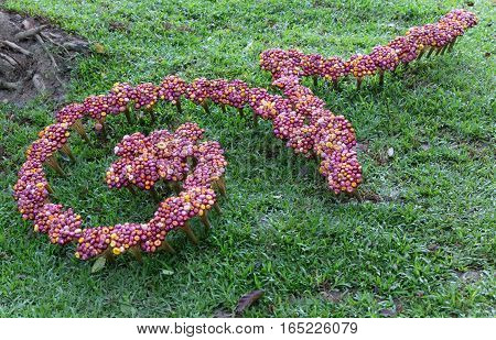 Flower Decoration On Lawn Yard For Traditional Thai Alphabet Number Nine