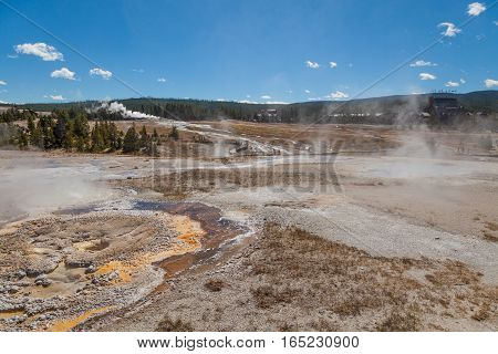 a geyser basin near old faithful in Yellowstone National Park Wyoming