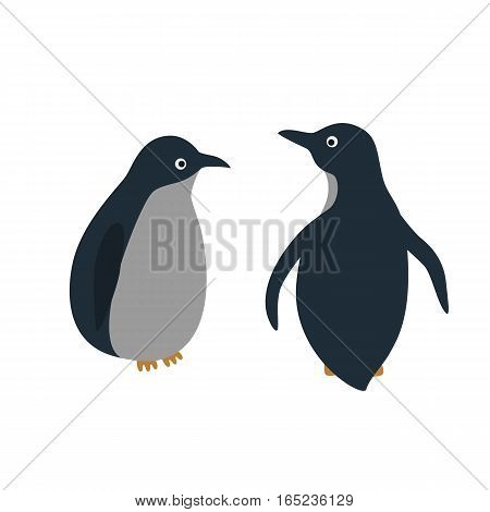 Vector cartoon style illustration of penguins. Isolated on white background.