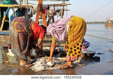 DIU, INDIA - JANUARY 9, 2014: Women dressed with colorful saris at Vanakbara Fishing port in Diu Island