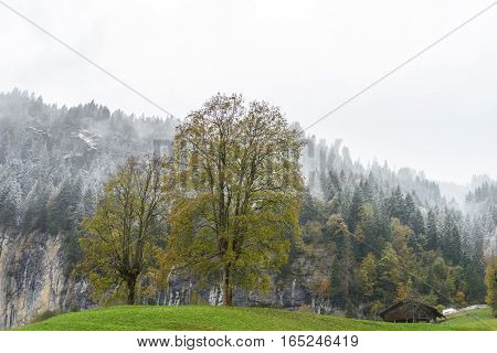 wooden house in Countryside, Switzerland - stock photo
