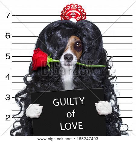 Crazy In Love Valentines Dog Mugshot