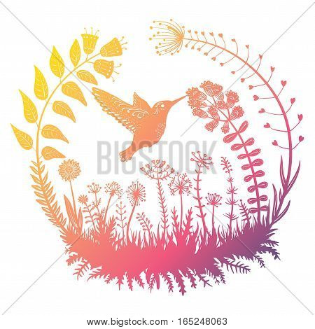 Vector illustration. Stylized hummingbird drinking nectar from the flower. Exotic bird. Ornamental plants in a circle. Line art. Drawing.