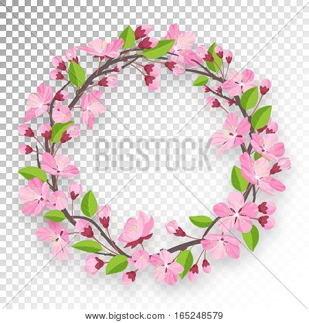 Blossoming cherry round frame for text. Apple-tree or cherry flowers and buds of branch are twisted by ring banner. Spring design isolated on transparent background. Cartoon style vector illustration