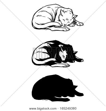 Vector illustration, sketch of a cat sleeping curled up. Print for T-shirts